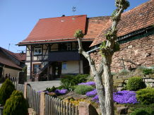 Ferienhaus Alte Wagnerei