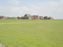 Ferienwohnung OASE Baltrum