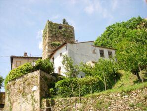 Ferienhaus Torre Pisana