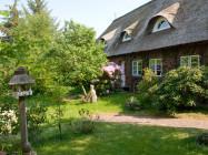 Reetdachhaus - Haus 2