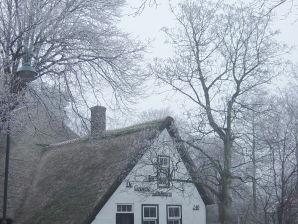 Ferienhaus De Groene Lantaarn