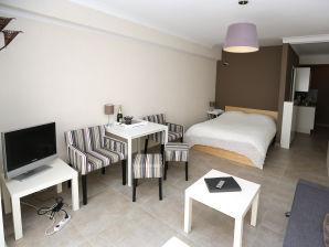 Apartment Dirica 0105