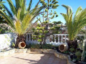 Ferienwohnung Costa Calma Jasmin