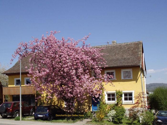 """Ferienwohnung Doncharifa """"das gelbe Haus"""" Bodensee"""