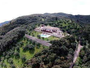 Villa Olive Mountain