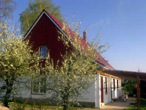 Atelier Ferienwohnung auf Usedom