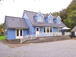 Villa The Blue House