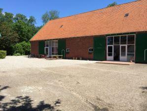 Ferienhaus Grijpskerke - ZE042
