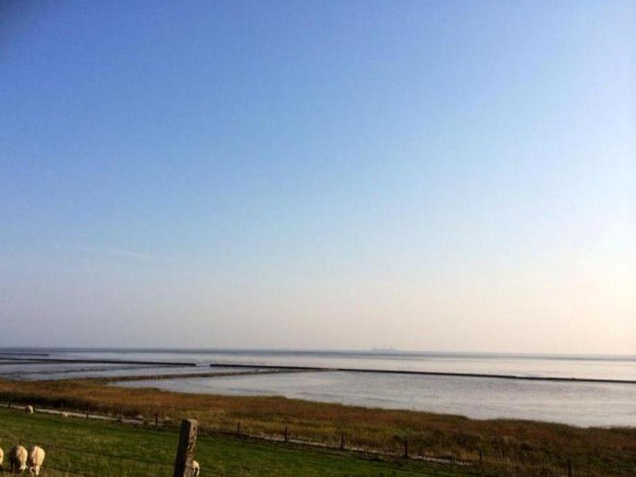 Ferienwohnung frieseninsel wangerland firma for Ferienwohnung nordseekuste