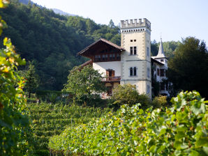 Bauernhof Ansitz Dornach