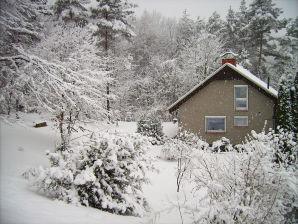 Ferienhaus Waldesruh