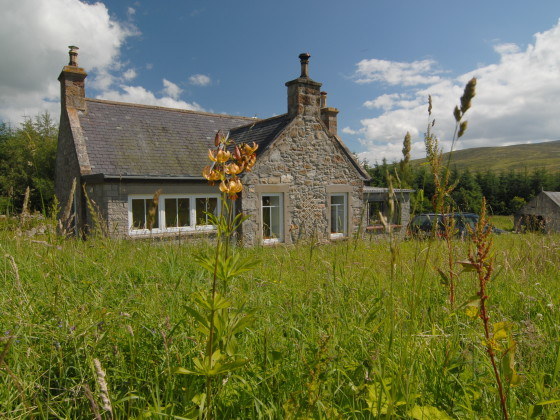 ferienhaus auf waldlichtung im herzen von schottland morayshire malt whisky country herr. Black Bedroom Furniture Sets. Home Design Ideas