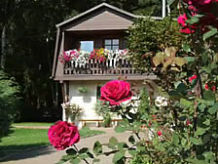 Ferienhaus Ferienhaus in der Ferienhausanlage Eckardt