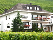 Wine estate & boarding house Weingut Abteihof