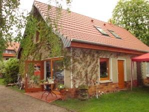 Ferienhaus Merle in Plau - Heidenholz