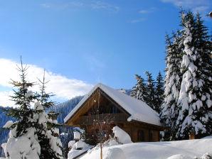 Skihütte Almhütte Weber