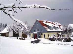 Waldblick