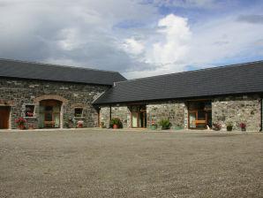 Ferienwohnung Duffys of Ballybin