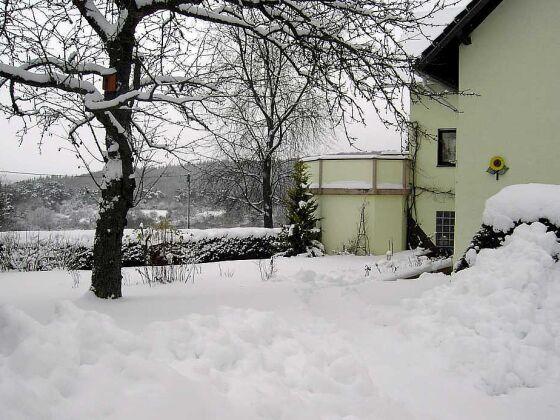 Winterliche Pracht vorm Fesnter