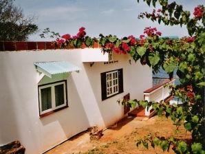 Ferienwohnung Villa Iguana