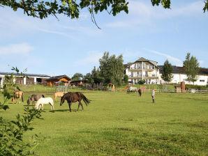 Ferienwohnung Nr. 6 Froschkönig-Biohof Michelshof