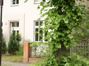 Apartment Waren