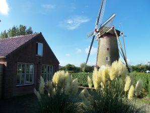 Ferienhaus Ouddorp-Goedereede (ZH006)