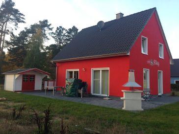 Ferienhaus Haus Kiebitz