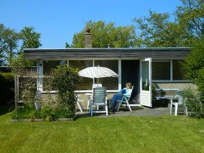 Ferienhaus Wildrijk 83