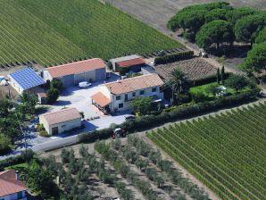 Ferienwohnung Casa del Vino