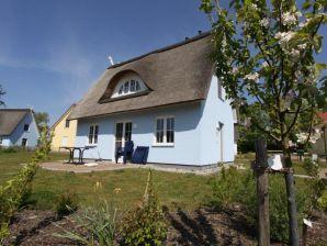 Reethaus B5 Haus Storch