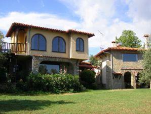 Die Steinhaus-Villa des Professors