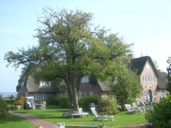 Friesenhof Bendixen Haus Hafis am Wattenmeer