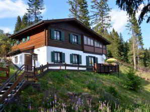 Ferienhaus Almhaus am Hohenwart