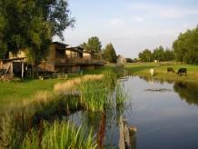 Ferienhaus Horse Lake Ranch