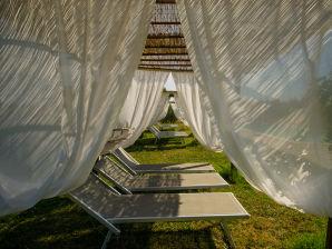 Apartment in Nice Villa Farmhouse near Pisa