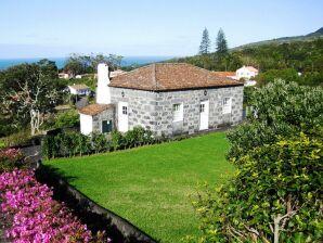 Ferienhaus Casas do Areeiro