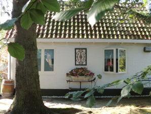 Ferienhaus De Dennentuin