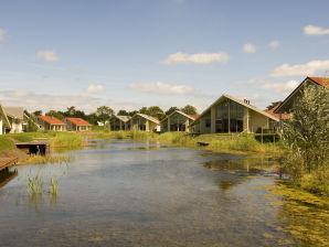 Ferienhaus in Zeeland