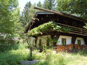 Ferienhaus Dürrwieser Waldhaus - Dürrwies 4