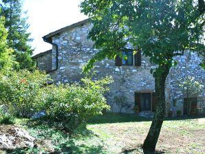 Ferienhaus Verde
