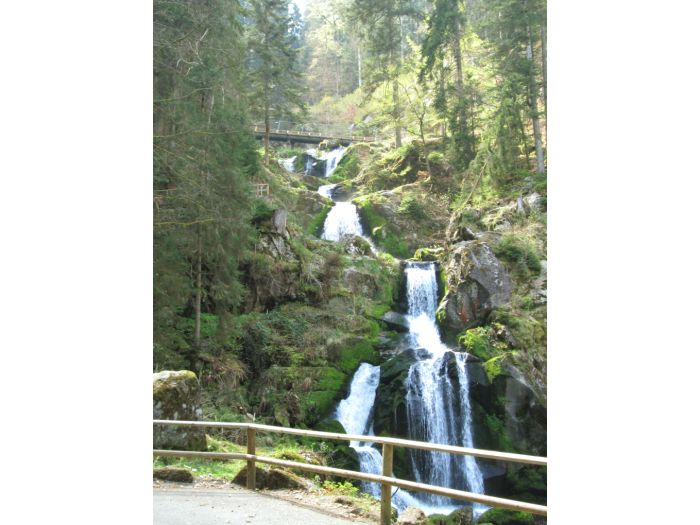 Wasserfall Dusche Selber Bauen : Wasserfall Dusche Garten .