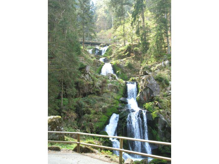 Wasserfall Dusche Garten : Wasserfall Dusche Garten : Schwarzwald, Triberger Wasserfall 163 m