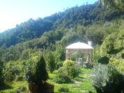Bauernhof Dolceluogo
