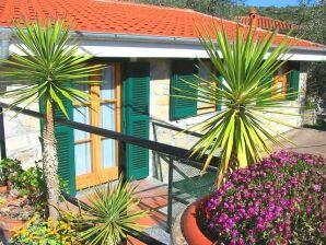 Ferienhaus Casa Mimosa