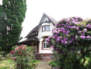 Ferienwohnung Villa Zapf