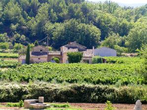 Ferienhaus über 2 Etagen in den Weinreben unterhalb von Ménerbes