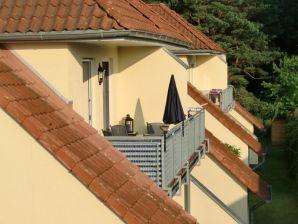 Sommergarten 40 24 Karlshagen