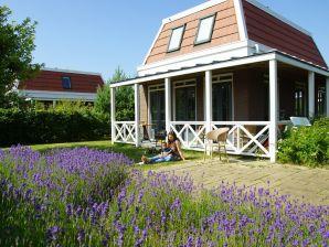 Ferienhaus Tulp & Zee 4