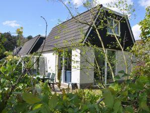 Ferienhaus Mooyeveld